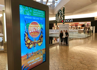 The importance of Professional Digital Signage Installation and Support