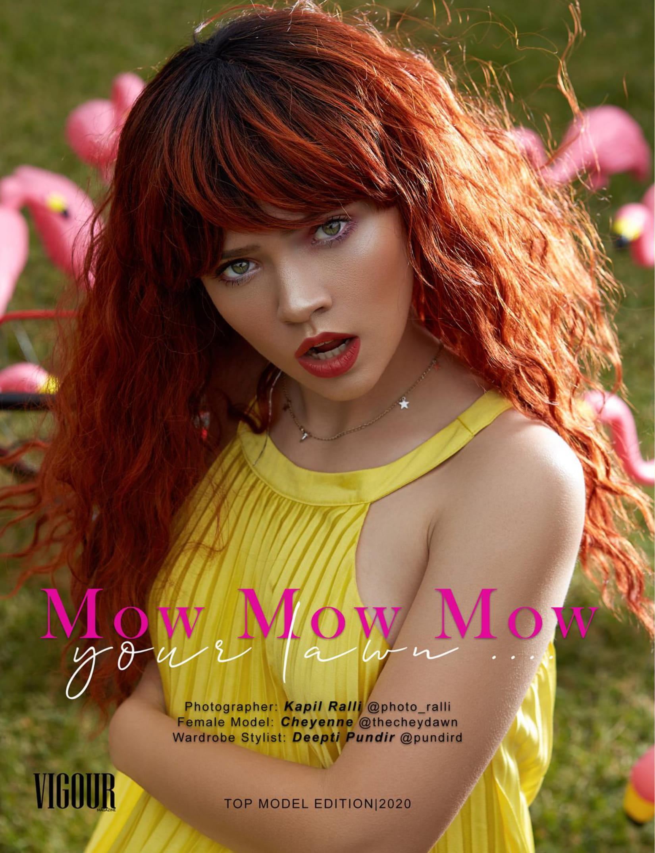 Cheye Vigour Mow 1
