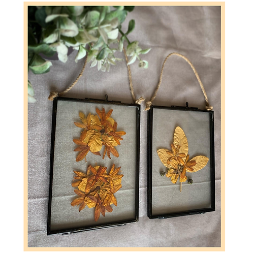 Handmade: Rope Hanging Frame Set of Two