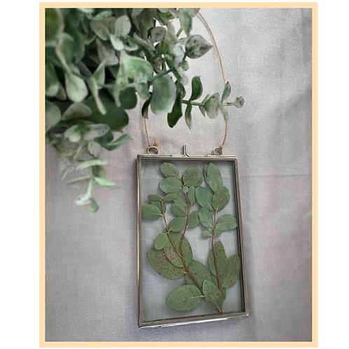 Eucalyptus Hanging Frame