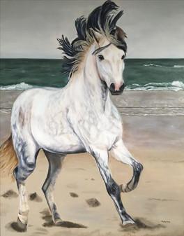 Paard, horse