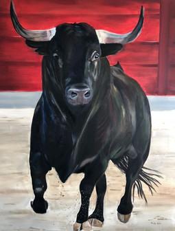 Toro, taurus, stier