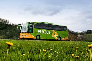 flixbus-wiese.jpg