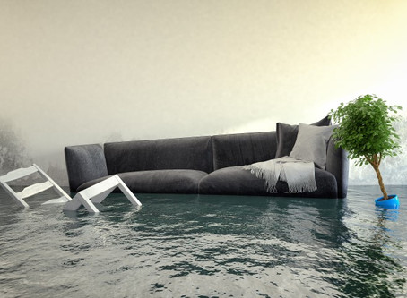 Facts You Should Know About Water Damage