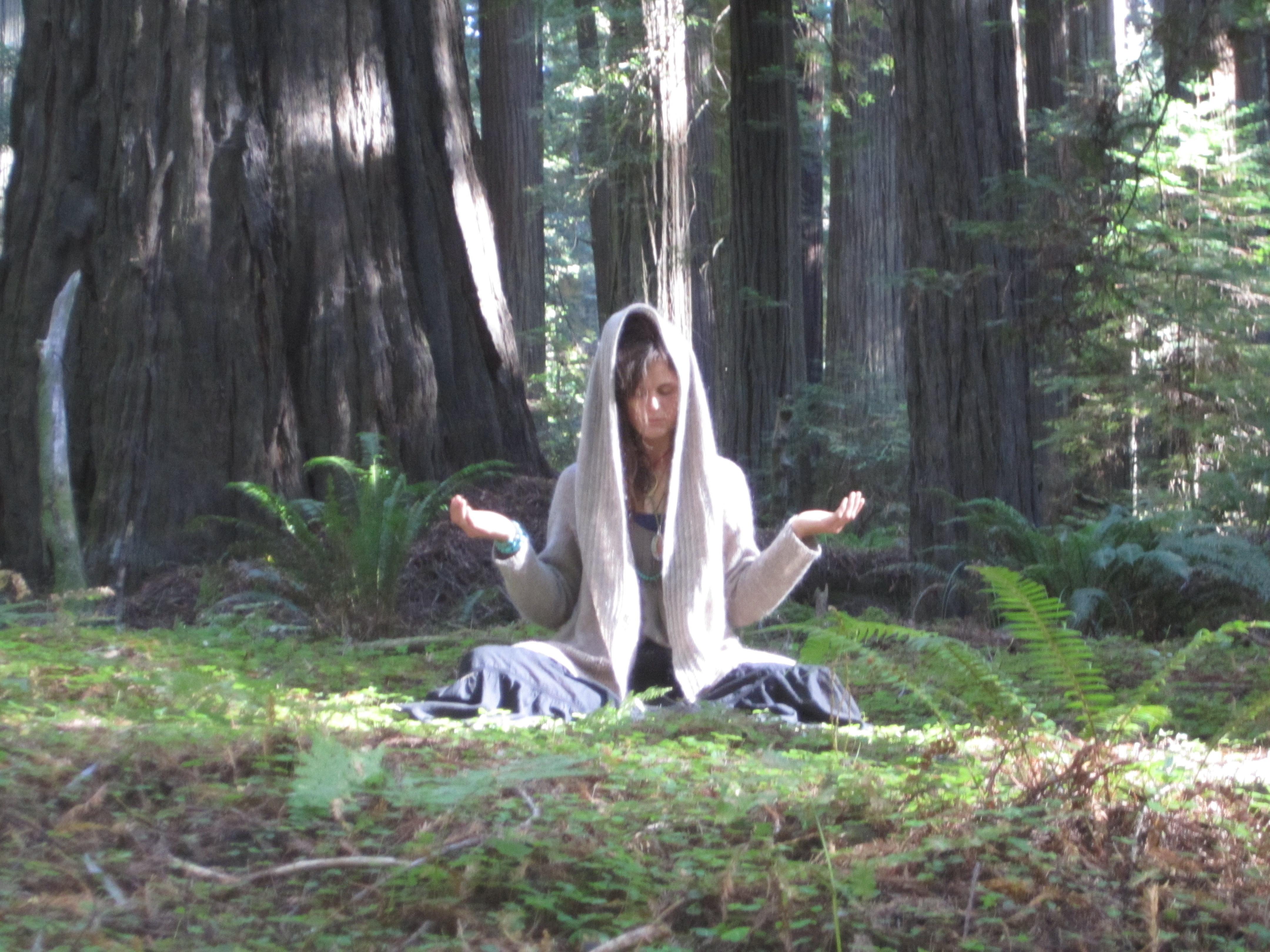 Meditation Yoga Classes