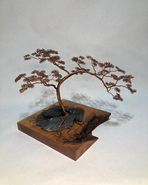 Copper Bonsai on Cherry and Slate