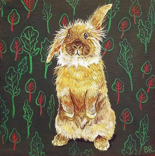 Spinach Rabbit