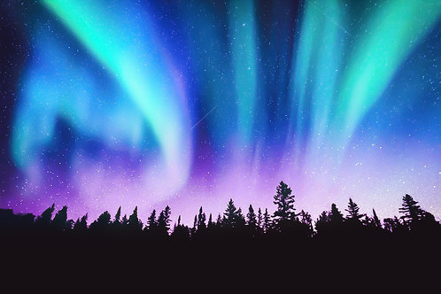Lost in Northern Lights