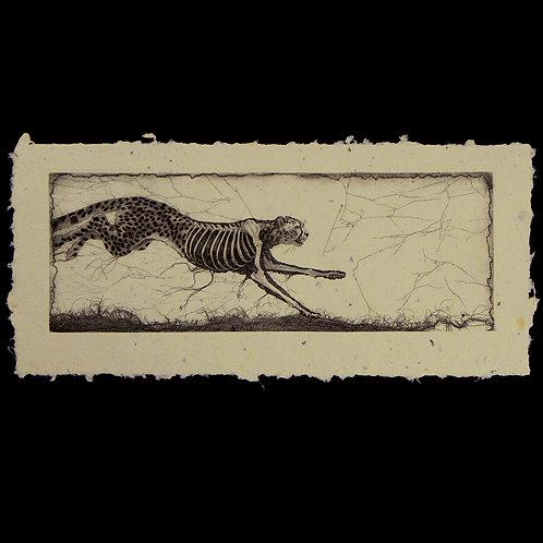 Racing Dinosaur on Handmade Paper