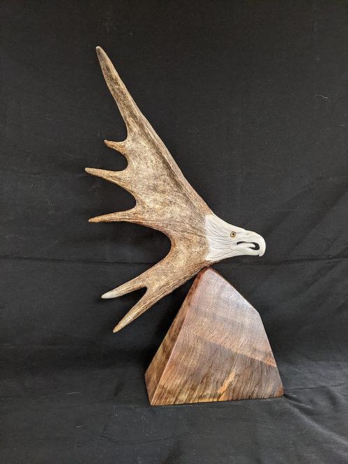 Moose Antler Eagle on table base