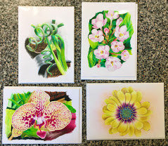 Set of 4 Cards - Colored Pencil
