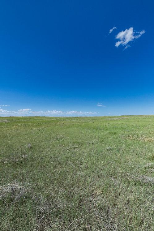 Sky/Prairie