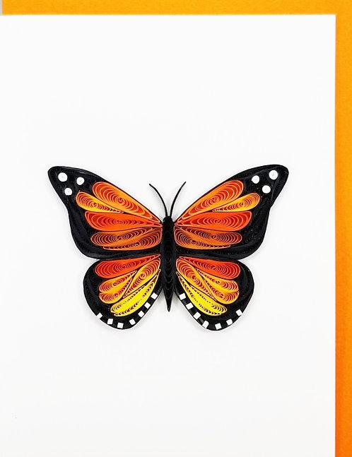 254 Monarch