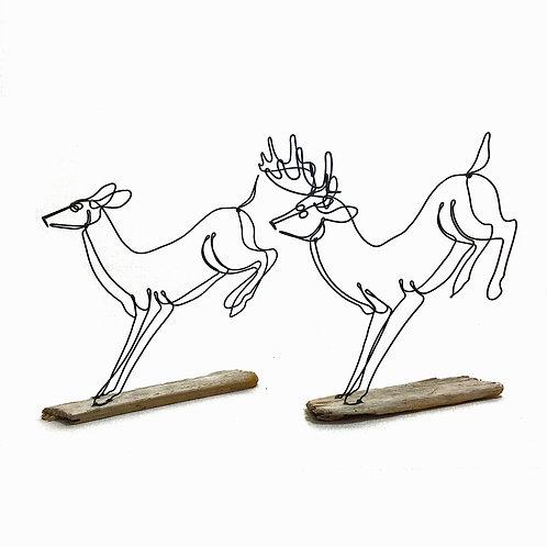 Buck and Doe/Running Set