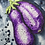 Thumbnail: Eggplants