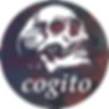Skull Etsy Icon.jpg