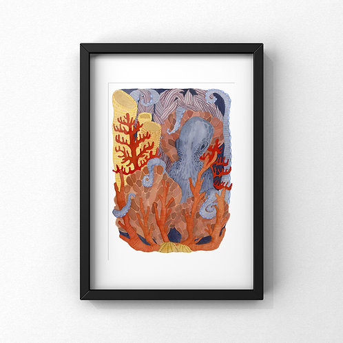 Coral Gardener