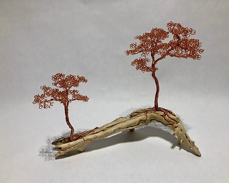 Two Copper Bonsai Trees on Driftwood