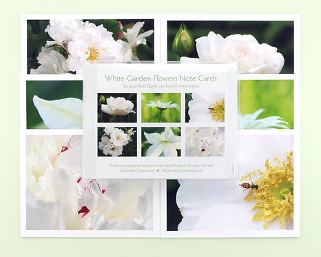 White Garden Flowers Photo Note Cards