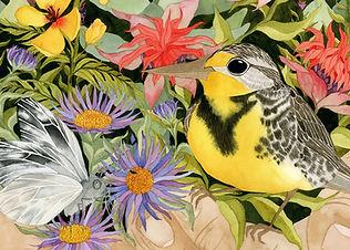 Murrell_Dove's Nest_2.jpg