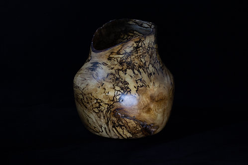 Magnificent, Heavily Spalted Live Edge Bowl Sycamore