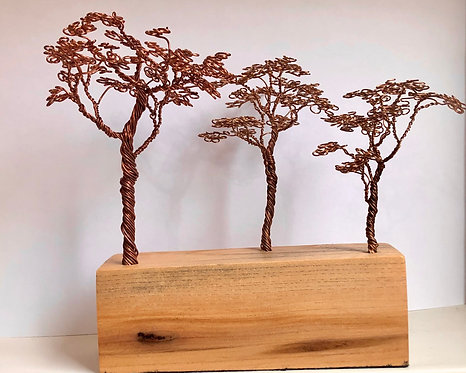 Three Copper Trees on Elm