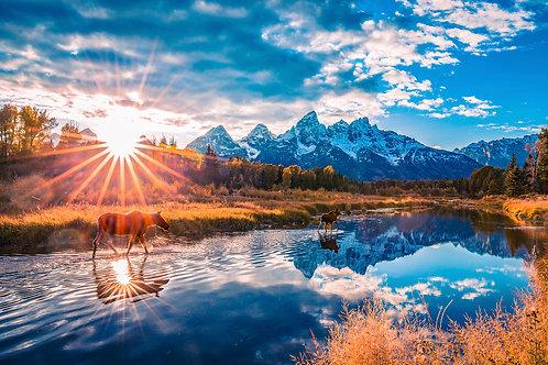 Stroll Down Grand Teton Sunset