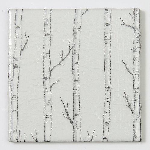 Birch on Grey