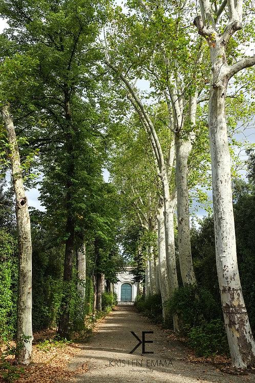 Baboli Gardens