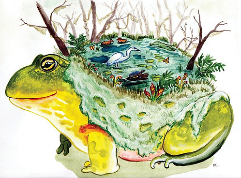 Frog Ecosystem