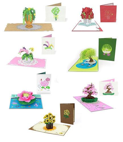 Flowers 7-Pack