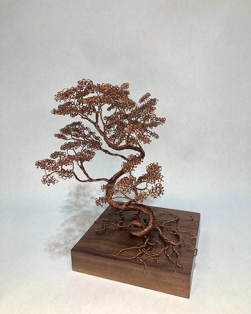 Copper Bonsai on Walnut