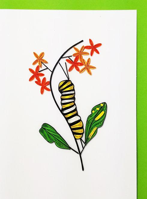254cat Monarch Caterpillar