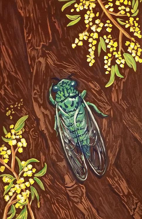 Cicada & Acacia Tree