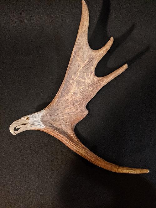 Moose Antler Eagle for wall mount