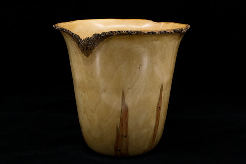 So much character in this  piece of Box Elder