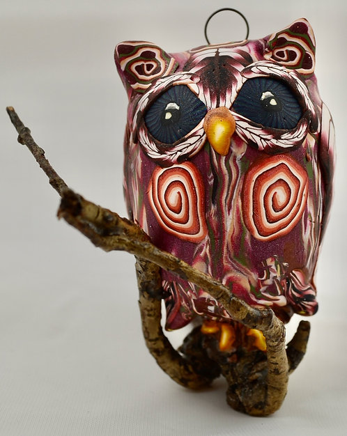 Listening Owl
