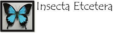 InsectaLOGO.jpg