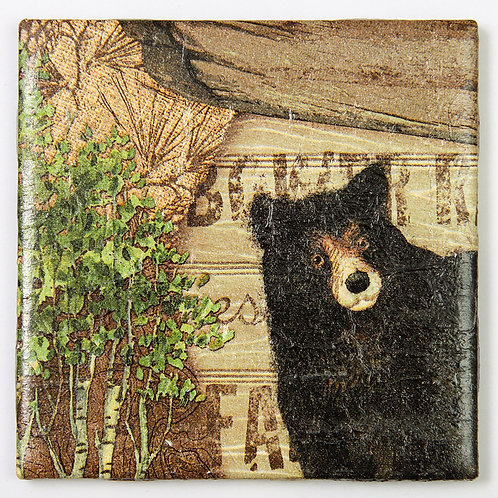 Bear:  Set of 4