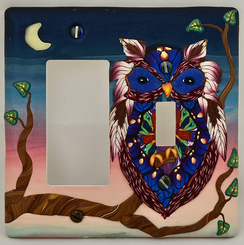 Irridescent Owl Double Combo Plate