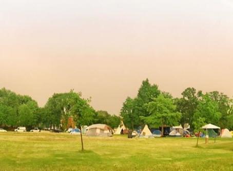 Updates + Actions: Powderhorn Sanctuary