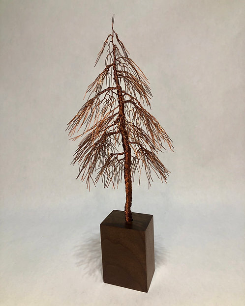 Copper Pine Tree on Walnut