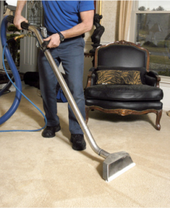 carpet cleaner professional.png