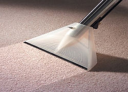 carpet cleaning calgary, calgary carpet cleaning, carpet cleaning services,carpet cleaner calgary,calgary carpet cleaner