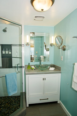 NEW washroom with walk in shower (1)