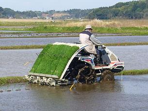 Rice-planting-machine,katori-city,japan.