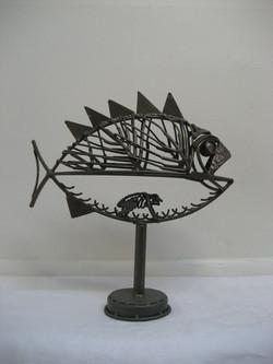 Longstaffe Fish 2