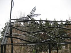 Longstaffe Garden 1