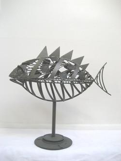 Longstaffe Fish 3