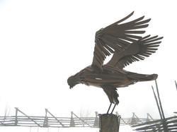 Longstaffe Bird 6